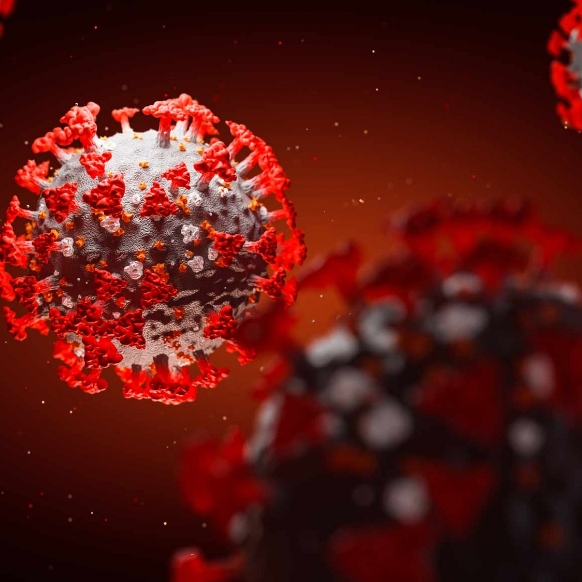 Medownick takes extra precautions to prevent the spread of COVID-19 – the coronavirus